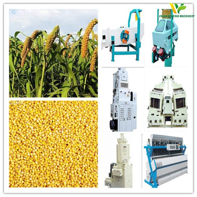 millet processing project